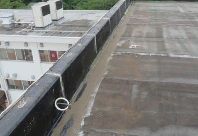 二松学舎大学附属中学校・高等学校校舎屋上シート防水工事のBefore