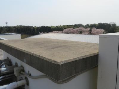 二松学舎大学屋上防水工事ビフォー