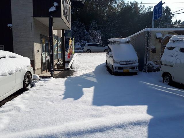 柏市シャインの事務所も積雪で銀世界