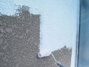 白井市S様 外壁塗装