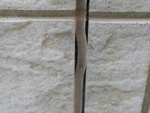 船橋市M様 外壁補修