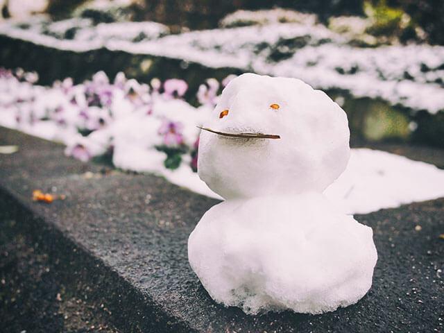 今年初の雪?