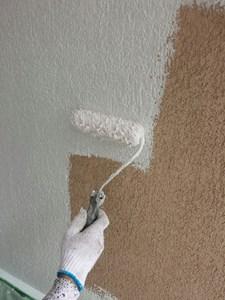 柏市W様邸 外壁塗装