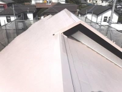 松戸市二ツ木N様邸 屋根塗装