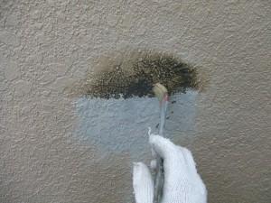 守谷市A様邸 外壁塗装