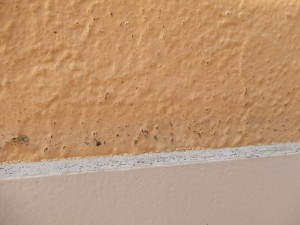 千葉県市川市 外壁塗装13