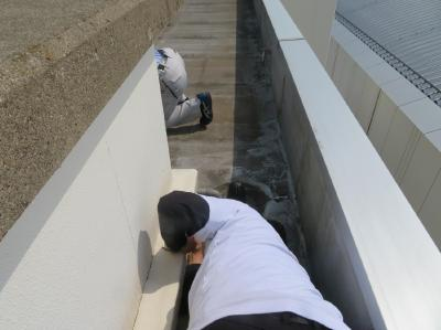 二松学舎大学屋上防水現地調査