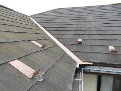 N様 屋根塗装工事ビフォー