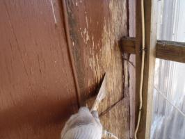 千葉県松戸市A様邸の外壁塗装と屋根塗装工程:劣化塗膜の除去