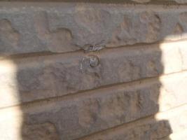 千葉県松戸市S様邸の外壁塗装と屋根塗装工程:パネルの釘処理(打ち込み)