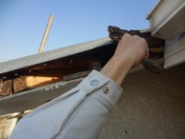 破風板の中の腐食確認